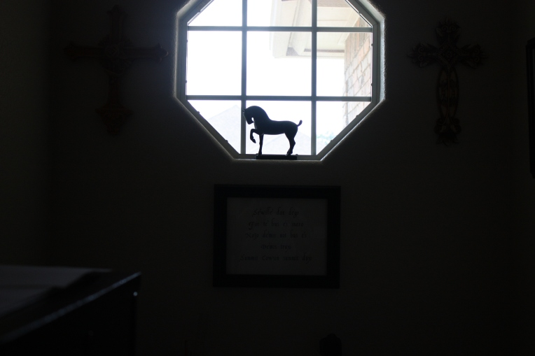shadow-horse-window