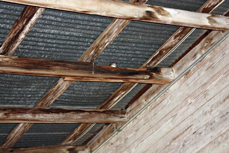 washboard ceiling-b